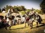 A.D. 1387 - Battaglia a Terra del Sole